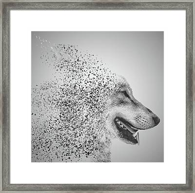 Disintegrated Wolf Framed Print