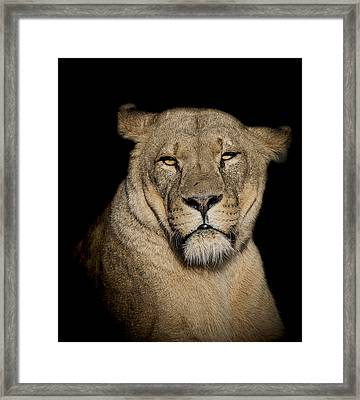 Displeasure Framed Print by Paul Neville