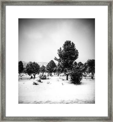Distant Framed Print by Mark Ross