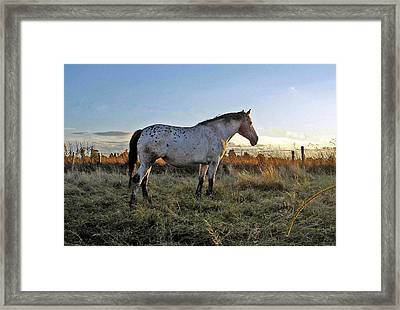 Distant Thoughts Framed Print