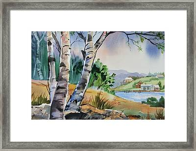 Distant View Framed Print by Dianna Willman