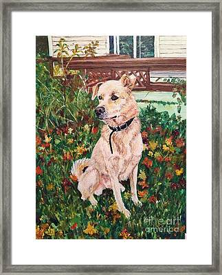 Distracted Puppy Framed Print by Corry Leblanc