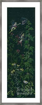 Ditchweed Fairy Raspberry Picking Framed Print by Dawn Fairies