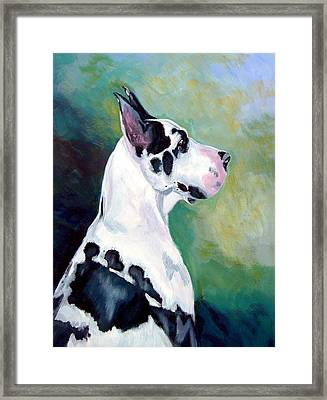 Diva The Great Dane Framed Print by Lyn Cook