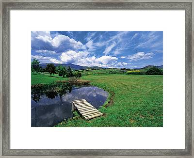 Dive In Framed Print by Jim Nelson