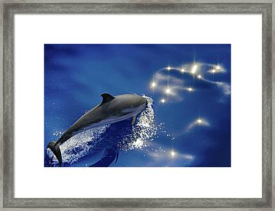 Dive Into The Blue Framed Print