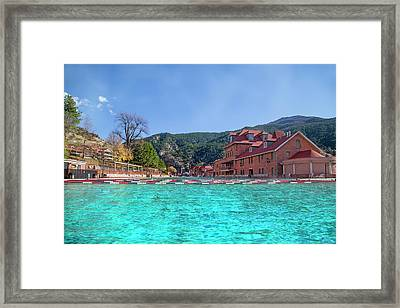 Dive Right In Framed Print by Betsy Knapp