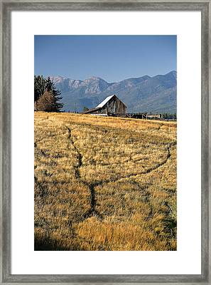Divergence Framed Print by Lawrence Boothby