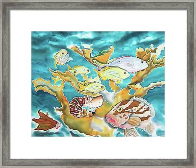 Divers Wet Dream Framed Print
