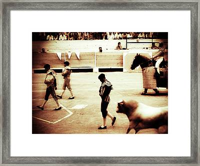 Framed Print featuring the photograph Arles by Lucian Capellaro