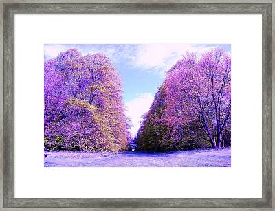 Divide Framed Print by HweeYen Ong