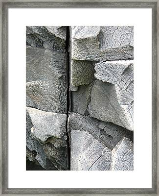 Dividing Lines Framed Print by Donna McLarty