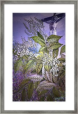 Divine Framed Print by Kenneth Lambert