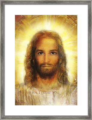 Divine Mercy, Sacred Heart Of Jesus 3 Framed Print