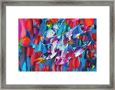 Diving Bird Framed Print