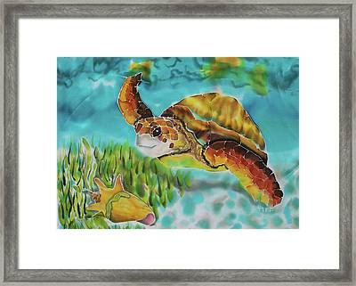 Diving Conch Framed Print