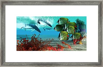 Diving Whales Framed Print by Corey Ford