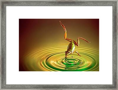 Diving Framed Print by William Lee