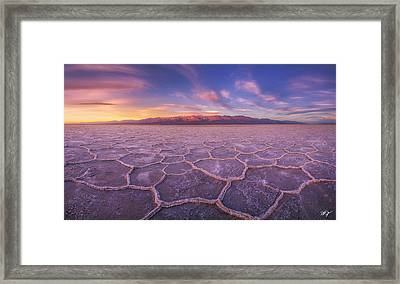 Division Framed Print by Peter Coskun