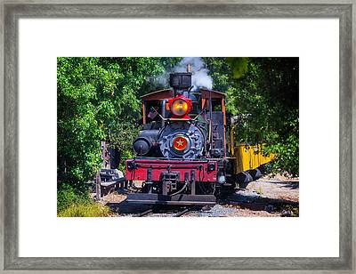 Dixiana Coming Through The Woods Framed Print by Garry Gay