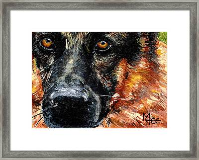 Dixie Framed Print by Mary-Lee Sanders