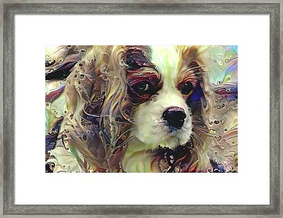 Dixie The King Charles Spaniel Framed Print