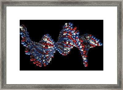 Dna Atom Stem Framed Print by Allan Swart