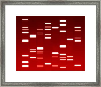 Dna Red Framed Print