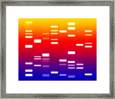 Dna Sunset Framed Print