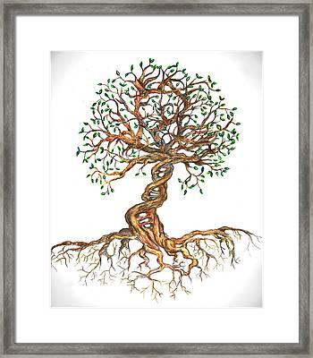 Dna Tree Of Life Framed Print