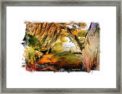 Framed Print featuring the photograph Do-00268 Trees On Water In Avoca Estuary by Digital Oil
