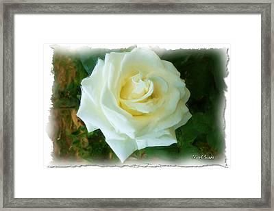 Framed Print featuring the photograph Do-00300 La Rose De Aaraya by Digital Oil