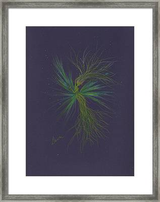 Framed Print featuring the drawing Do Not Cut The Grass In The Dark by Dawn Fairies