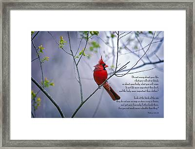 Do Not Worry . . .  Framed Print by Bonnie Barry