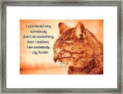 Do Something - Orange Cat Framed Print