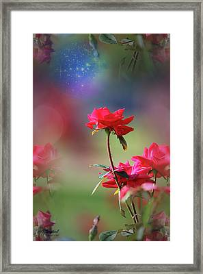 Do You Believe In Magic Framed Print by Theresa Campbell