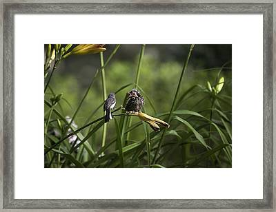 Do You Have Any More 9 Framed Print by E Mac MacKay
