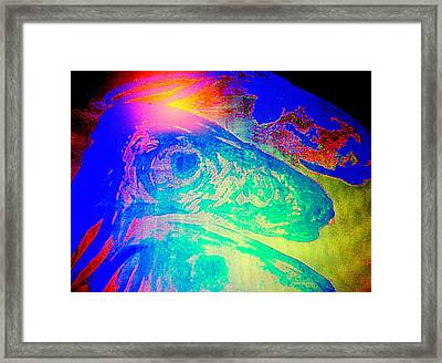 Do You Know Who We Are Or Do You Just Judge Us   Framed Print by Hilde Widerberg