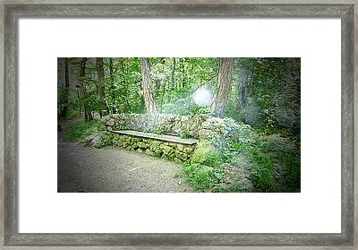 Framed Print featuring the photograph Do You Want To Take A Rest by Bee-Bee Deigner