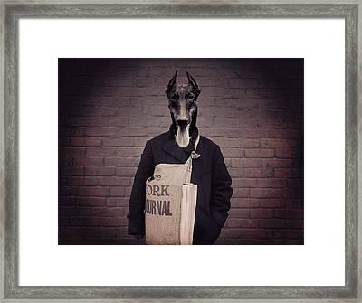 Doberman Paperboy Framed Print
