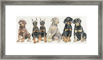 Doberman Puppies Framed Print by Barbara Keith