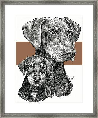 Doberman Uncropped Framed Print by Barbara Keith