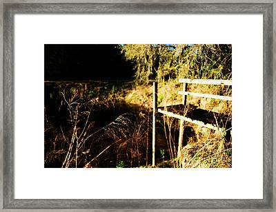 Dock Framed Print by Ryan Swingle