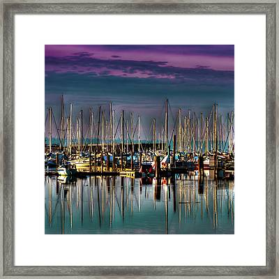 Docked Sailboats Framed Print by David Patterson