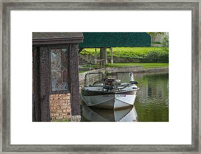 Docking Mayflies Framed Print