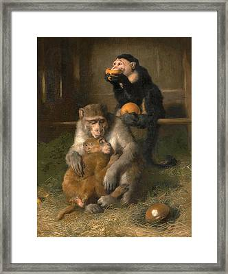 Doctor's Visit To Poor Relations At The Zoological Gardens Framed Print by Edwin Landseer