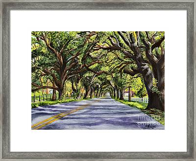 Docville Oaks Framed Print by Elaine Hodges
