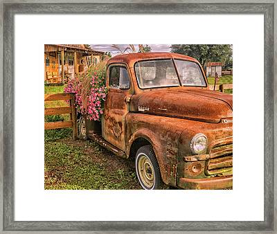 Dodge Flower Pot Framed Print
