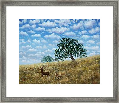 Doe And Fawn Under White Fluffy Clouds Framed Print by Laura Iverson