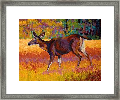 Doe IIi Framed Print by Marion Rose